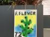 FAKE FLOWERS   Enrico Bonetto