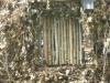 La Ronda dell'Arte   Forte Mezzacapo (Zelarino - Venezia)