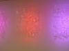 Luci e ombre del pensiero (La Fortezza Bastiani) | Angelo Muriotto