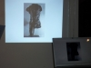 Rilke, Rodin, Cézanne - L'opera d'arte come Réalisation | Spazio Voltolina (Venezia Mestre)
