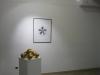Sette sculture da camera   Masayuki Koorida